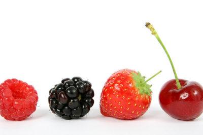 Simplifying Nutrition
